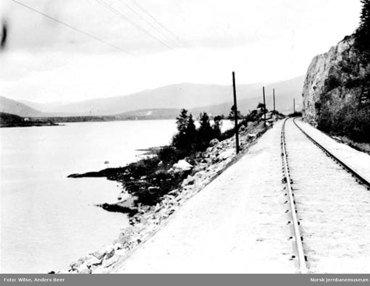 Numedalsbanen ved Bergsjø, sør for Rollag