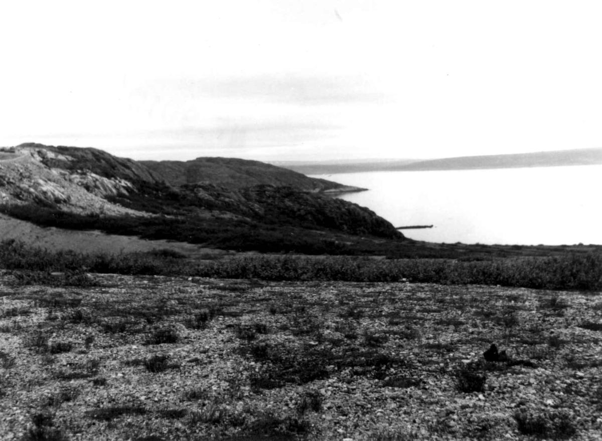 Parti utenfor Gandvik, innover Varangerfjorden. Det fremstikkende neset er Gandviknes. 1968.