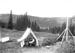 Holoa seter, Hadeland, Jevnaker, Oppland, 1903. Kvinne sitte