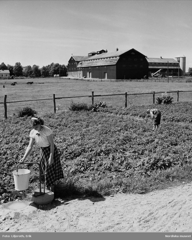 Vambåsa herrgård, i förgrunden en flicka som hämtar vatten i en hink