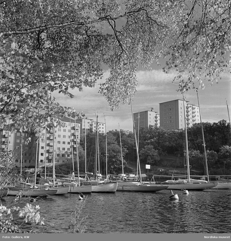 Höghus på Reimersholme. Segelbåtar i förgrunden.
