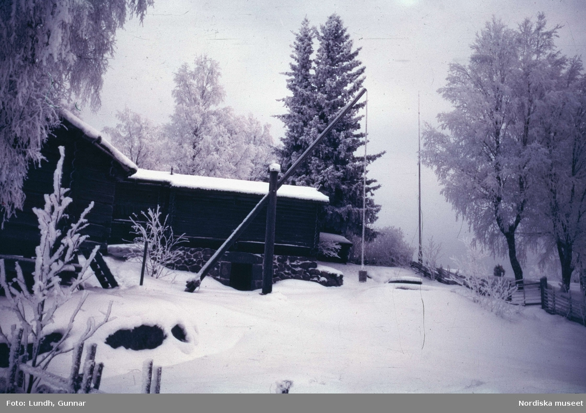 Dalarna. Gustaf Ankarcronas gård Holen i Tällberg. Några hus i vinkel och framför dem en hög brunnsstång. Kring husen höga granar och lövträd och i bakgrunden en gärdsgård med grind och en flaggstång.