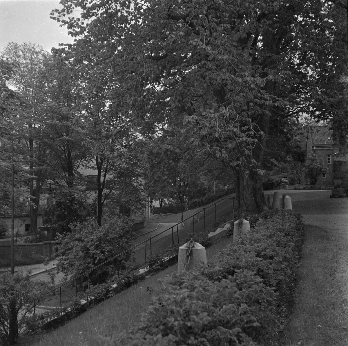 Parken utanför Helga Trefaldighets kyrka, kvarteret Oden, stadsdelen Fjärdingen, Uppsala