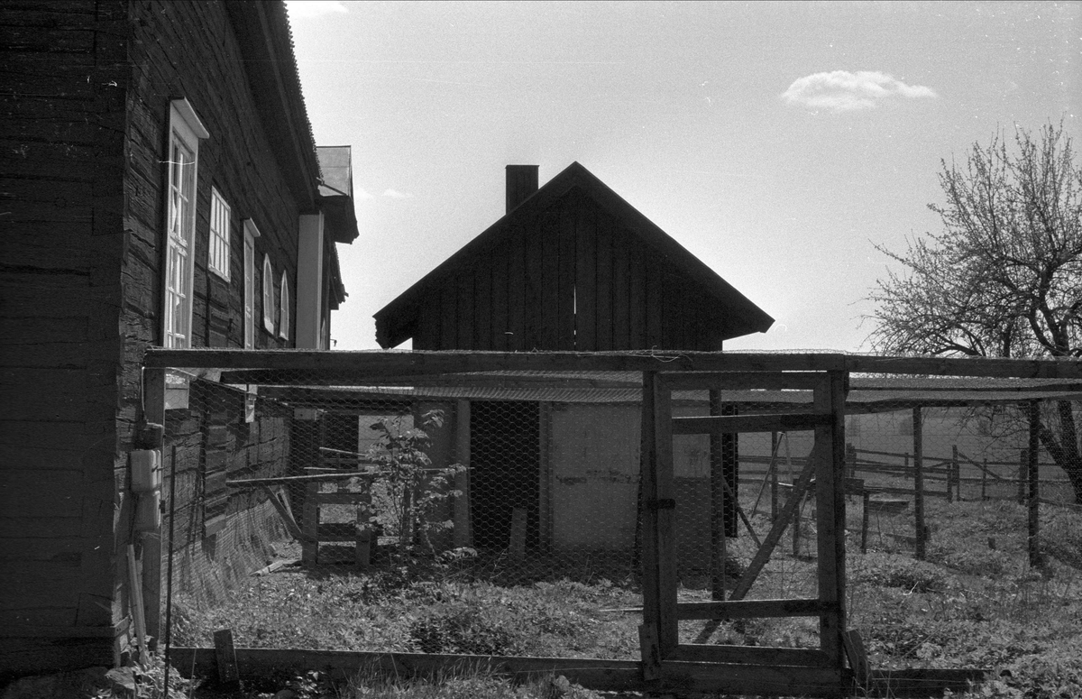 Hönshus, Sätuna gård, Björklinge socken, Uppland 1976
