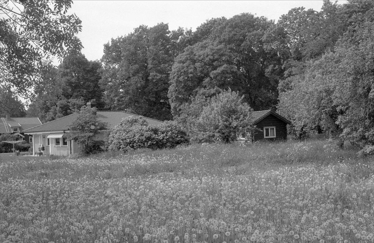 Bostadshus och fritidshus, Sundbro 8:4, Bälinge socken, Uppland 1983