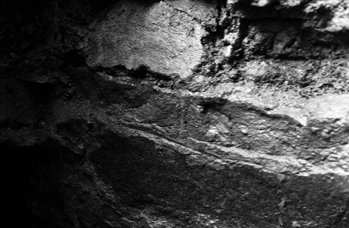 Arkeologisk undersökning av medeltida källare på Riddartorget, Uppsala april 1981