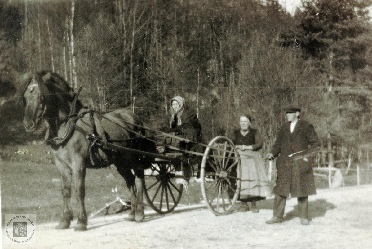 "Theodor og Anna og ""gamle"" Anna frå Krokan, på reis. Grindheim Audnedal."