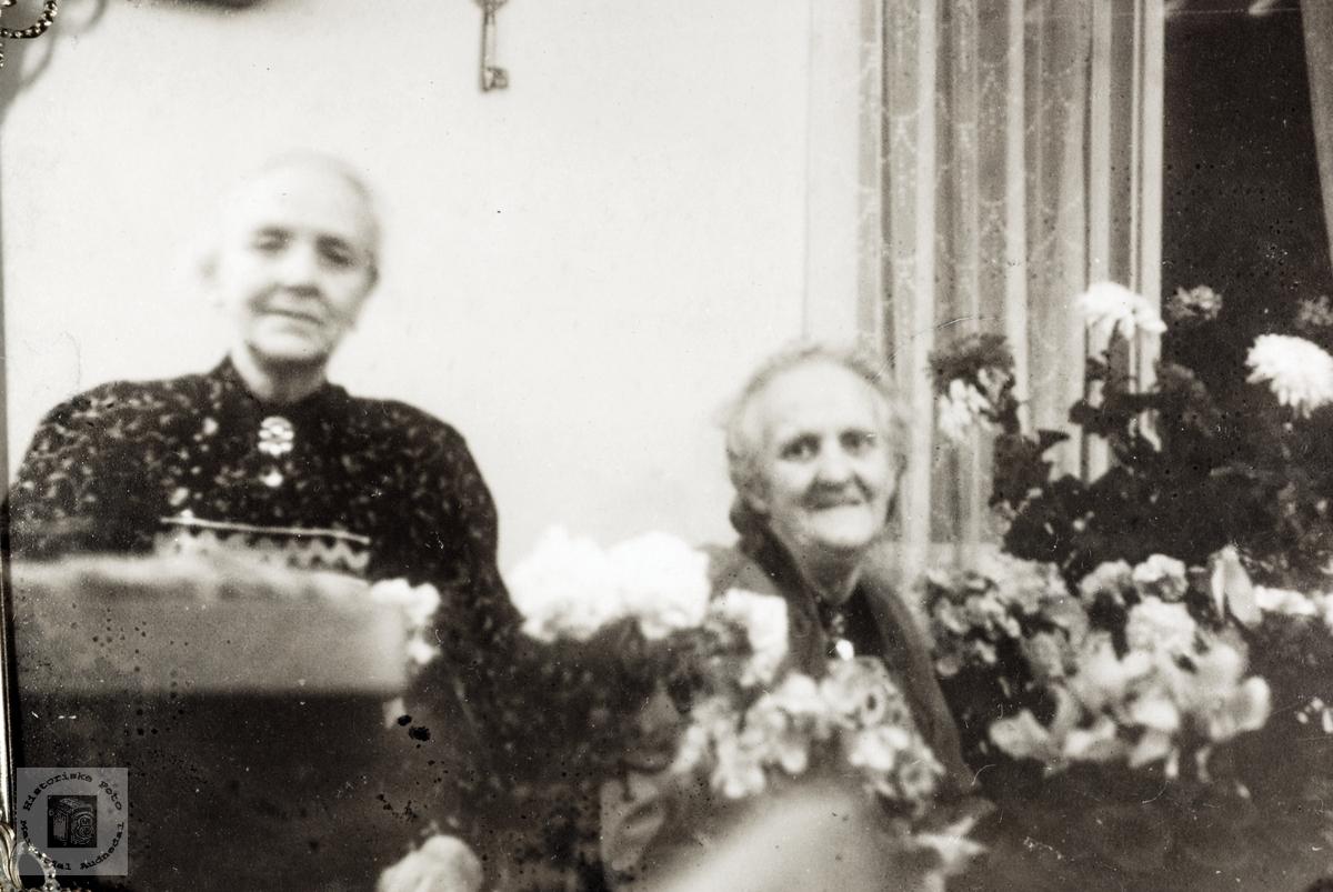 Feiring av Guri Høyland sin 90 årsdag. Grindheim Audnedal.
