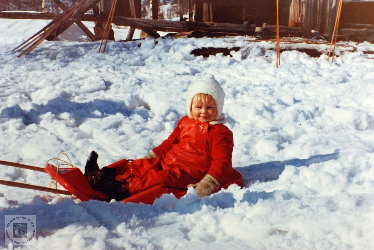 Gøy på akebrett i sol og snø på Flottorp. Audnedal.