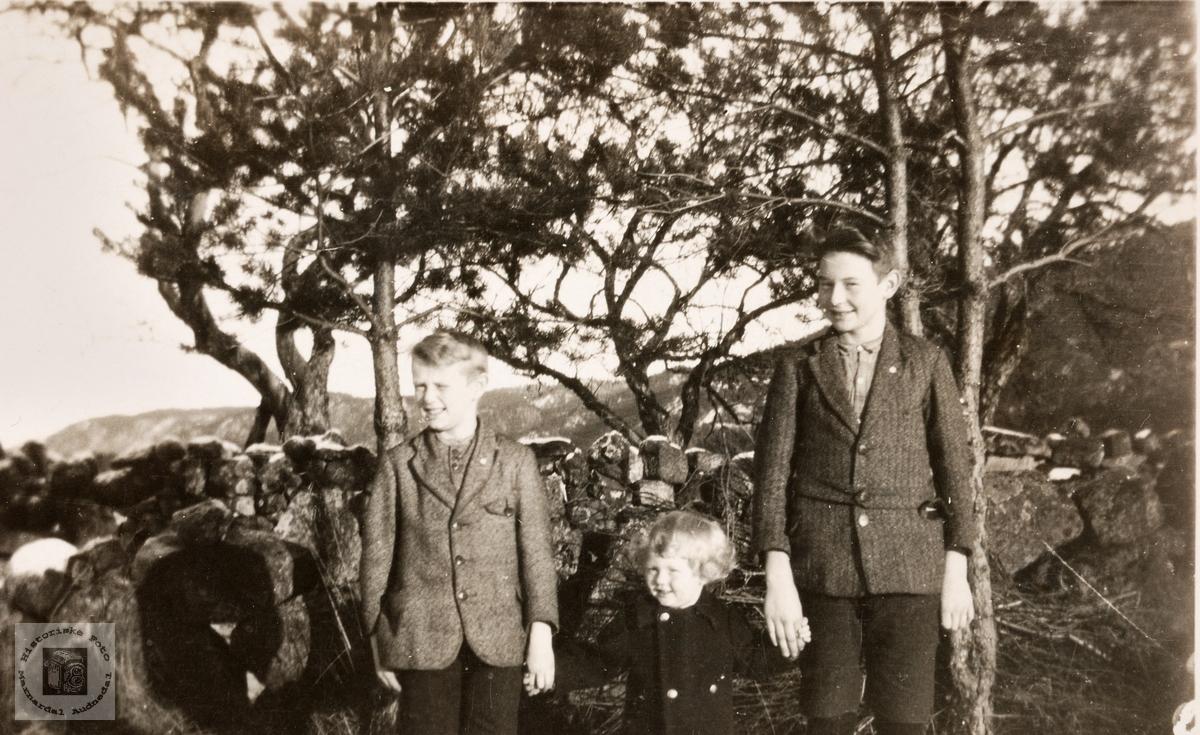 Brødrene Gunnar, Georg og Sigurd Strisland, Konsmo.