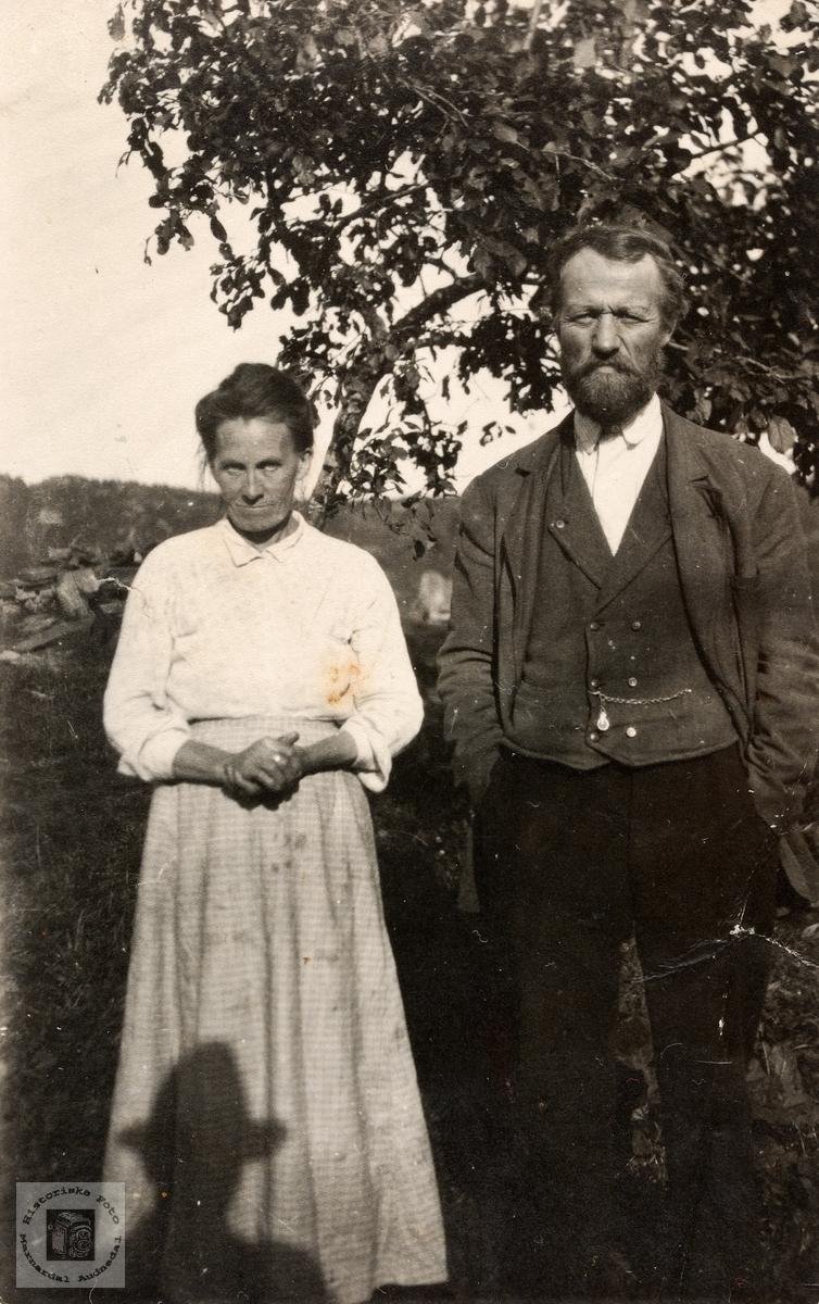 Portrett av ekteparet Dina og Nils Risdal. Komsmo Audnedal.