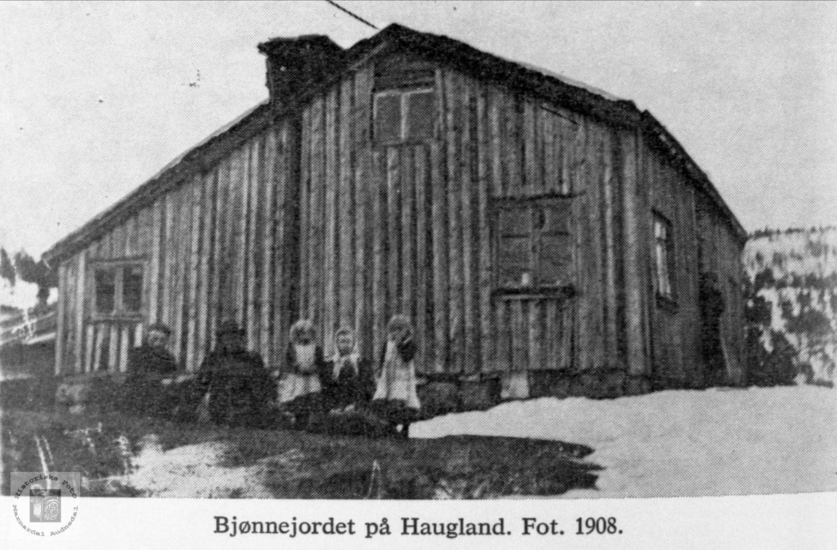 Bjønnejordet på Haugland i Bjelland.