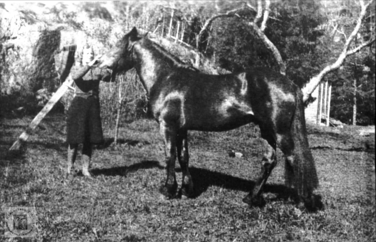 Borghild Laudal og hesten (Trygve Ruggen) i Verdalen, Laudal.