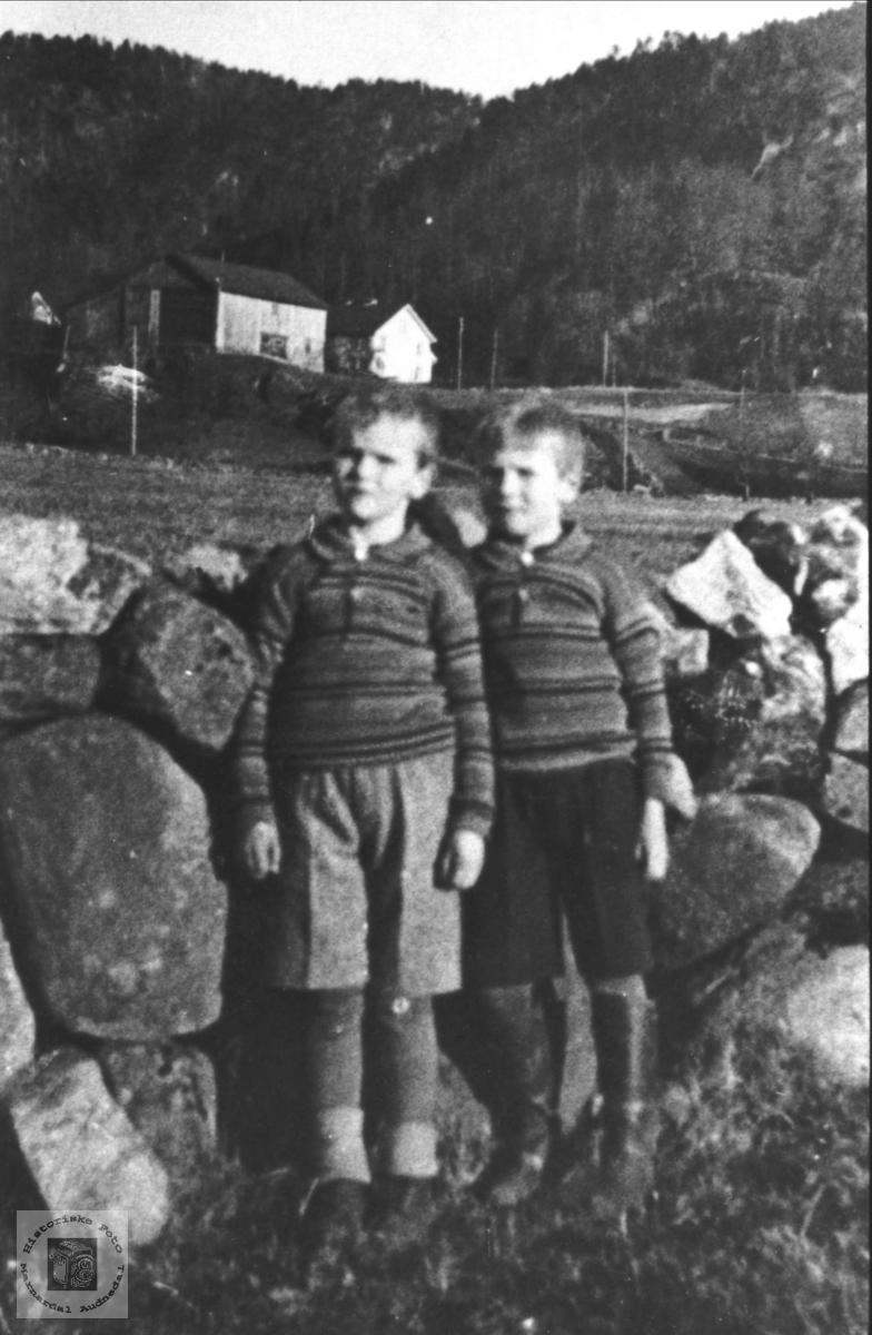 Brør Kåre og Kjell Bruskeland på Laudal.