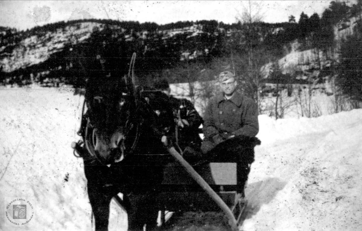 Ing. Ødegård i spisslede på Høye, Øyslebø.