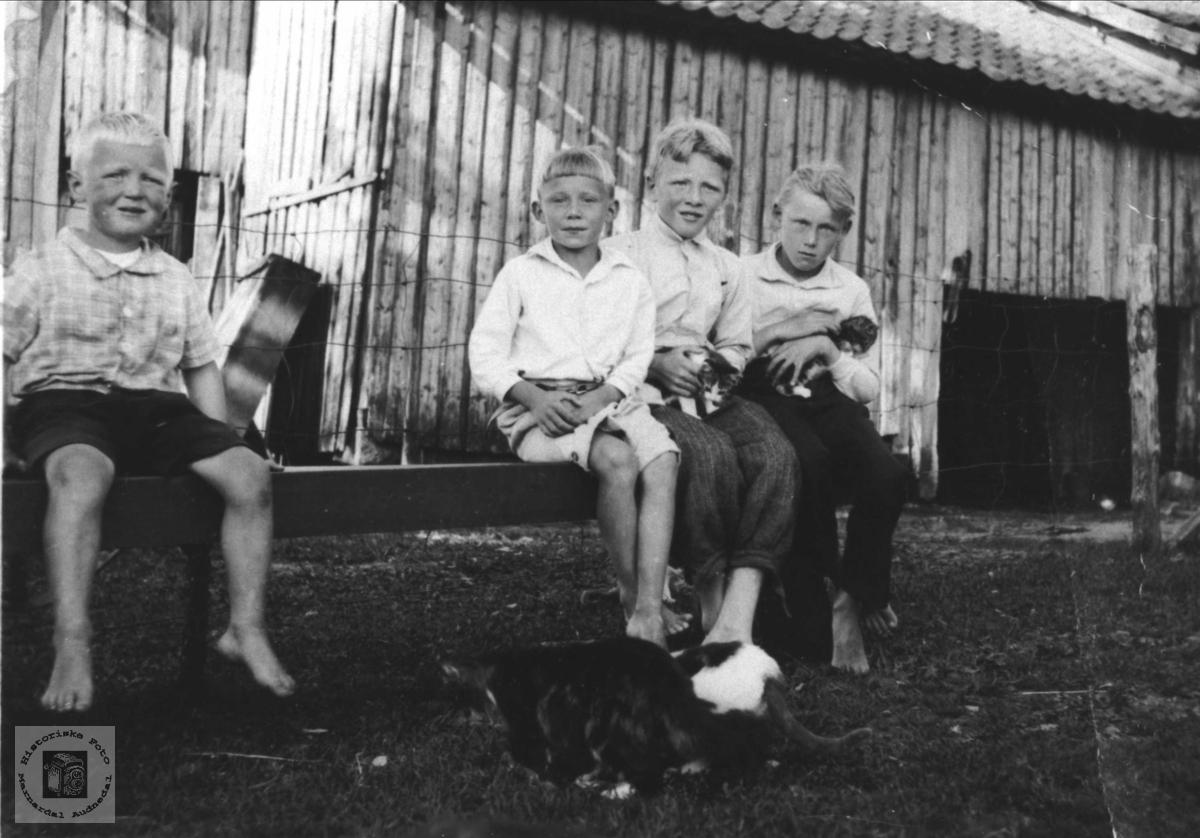 Guttegjeng Usland, Øyslebø.