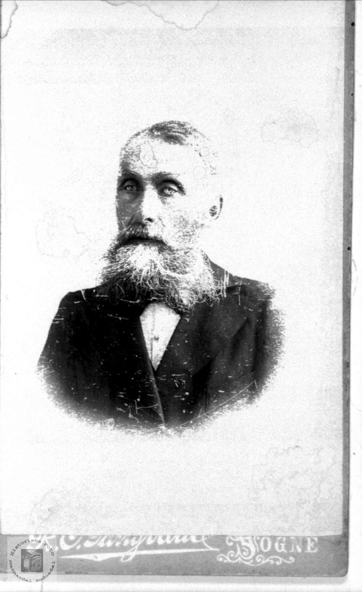Portrett av Thor Øyslebø