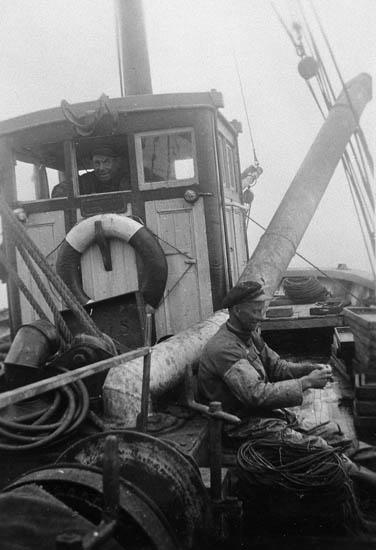 """Enligt tidigare noteringar: """"Ombord på LL 59 """"Olive"""" av Grundsund.  Ludvig Karlsson agnar backar. John Nilsson i styrhytten.  Repro av foto tillhörande Ernst Gullman""""."""
