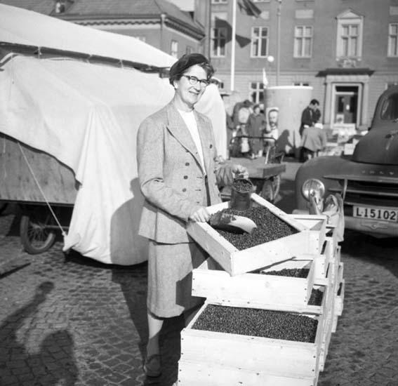 Lingonförsäljning, Uddevalla torg 2 oktober 1959