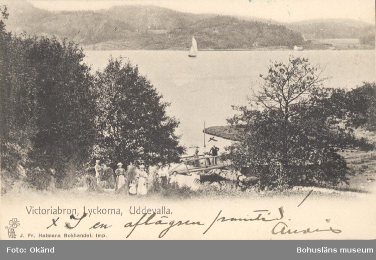 """Tryckt text på kortet: """"Victoriabron, Lyckorna, Uddevalla"""". """"J. Fr. Hallmans Bokhandel""""."""