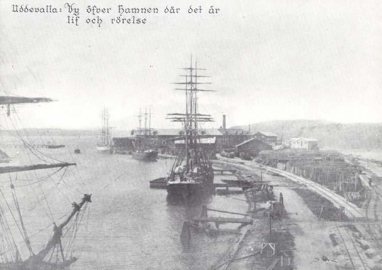 """Tryckt text på kortet: """"Uddevalla. Vy öfver hamnen där det är lif och rörelse."""" """"Reproduktion av foto tillhörande Uddevalla Museum. 23."""" """"Clara-Förlaget, Lysekil."""""""