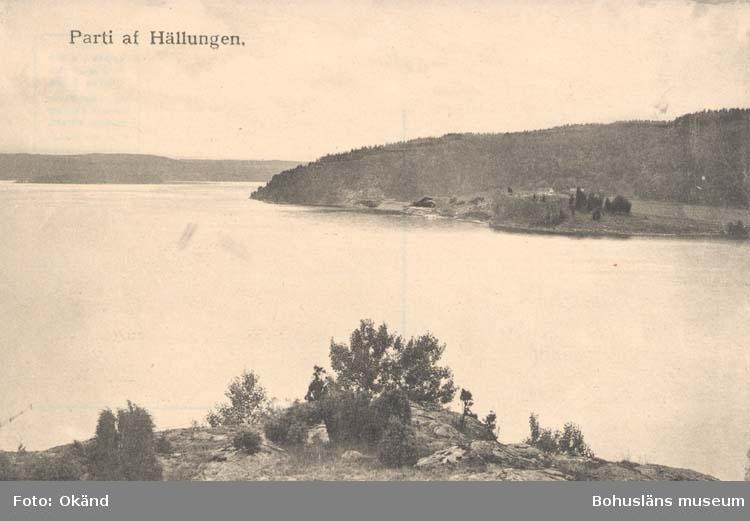 """Tryckt text på kortet: """"Parti af Hällungen."""""""
