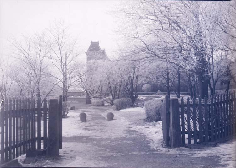 """Enligt text som medföljde bilden: """"Vinterbild vid Societetssalongen. Febr/Mars 09""""."""