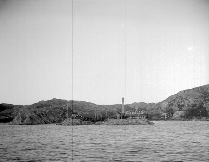 """Enligt text som medföljde bilden: """"Oxevik 1903."""" ::"""