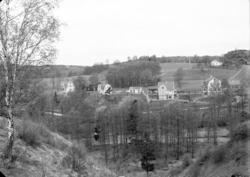 """Enligt fotografens noteringar: """"1931. 47. Möe samhälle Selma"""