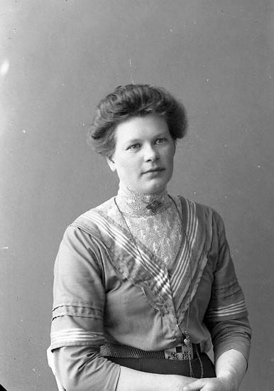 """Enligt fotografens journal nr 2 1909-1915: """"Magnusson, Gärda Ö. Skår Svenshögen""""."""