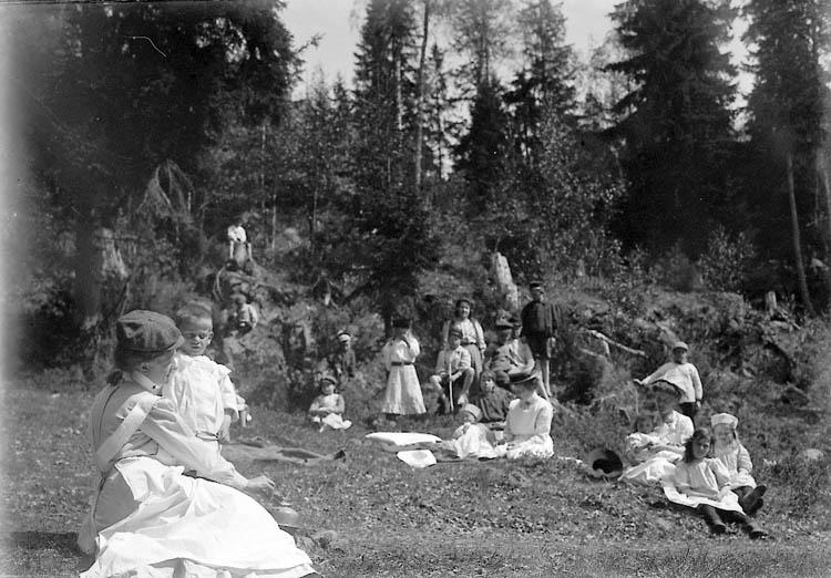 """Enligt fotografens journal nr 2 1909-1915: """"Kristinedal Fr. Elvira Pålsson"""". Enligt fotografens notering: """"Fröken Elvira Pålsson, Lissiestugan Kristindeal Tösse""""."""