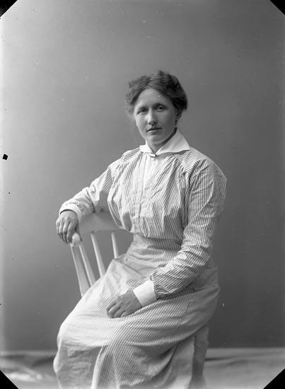 """Nydqvist, Jungfrun (Mia)"" enligt fotografens journal nr 2 1909-1915"