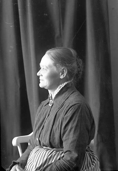 """Enligt fotografens journal nr 3 1916-1917: """"Larsson, Sara Brattön Höviksnäs""""."""