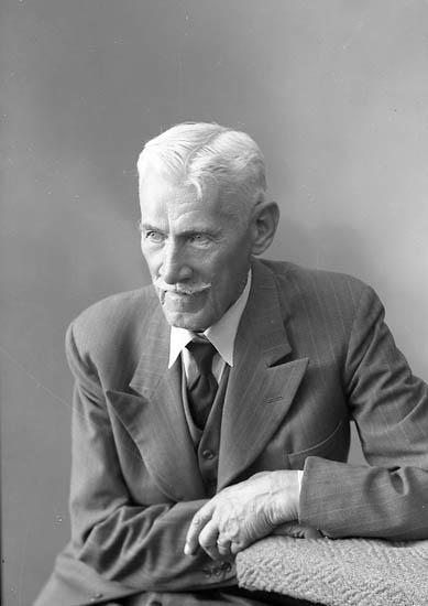 """Enligt fotografens journal nr 7 1944-1950: """"Nelson, Herr Henning Gottskär""""."""