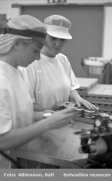 """Enligt fotografens noteringar: """" ... närmast i bild Birgitta Karlsson och Anne-Maj Karlsson tar sig an burkarna och lägger dom i brickor."""" (AC. Fortsättning från 234.) Fototid: 1996-01-19."""