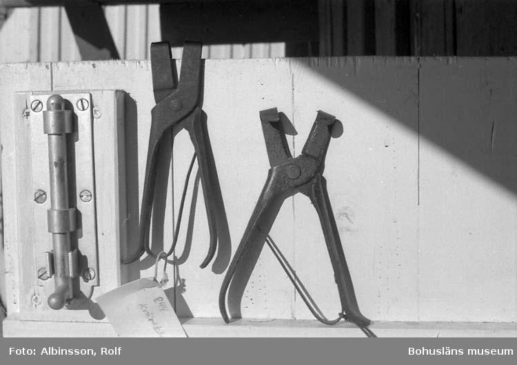 """Enligt fotografens noteringar: """"Kvärktång"""", verktyg till att öppna strupen på sillen med och få ur viss del av inälvorna så att saltet kommer till."""" Fototid: 1996-03-06."""