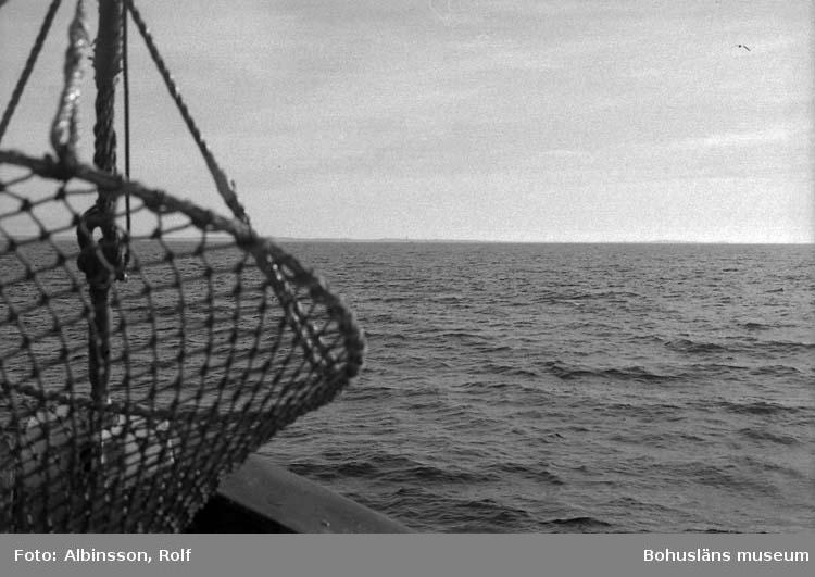 """Enligt fotografens noteringar: """"Trålsignalen nere.""""  Fototid: 1996-03-07."""