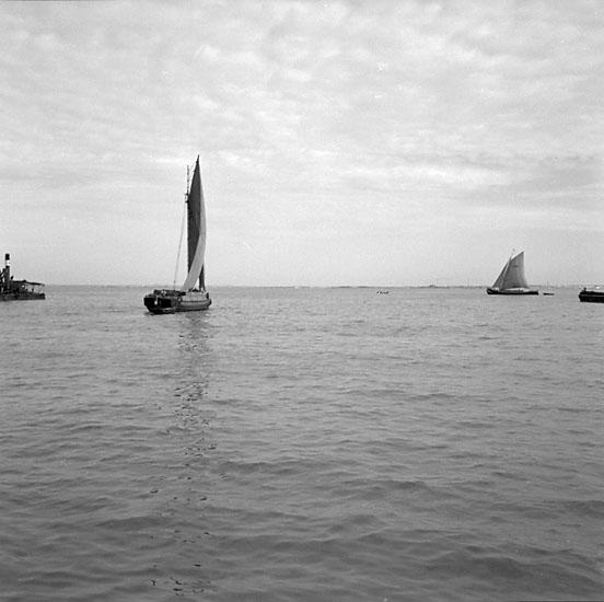 48. Portugal. Foto jornal finns på B.M.A. + fotoalbum. Samtidigt förvärv: Böcker och arkivmaterial. Foton tagna mellan 1959-11-15 och 1959-11-16. 12 Bilder i serie.