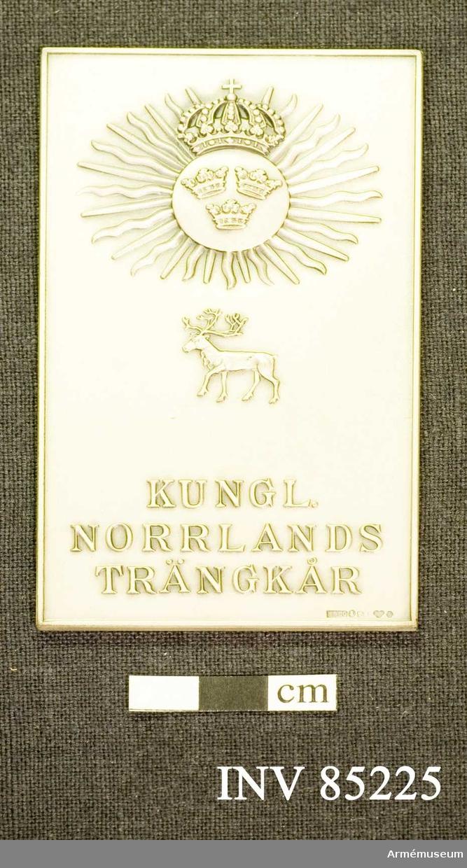 Grupp: M II.  Kungliga Norrlands trängkårs hedersplakett i silver.