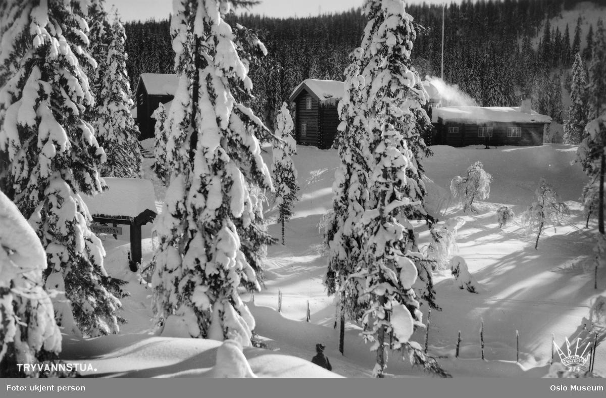 skog, snø, Tryvannstua