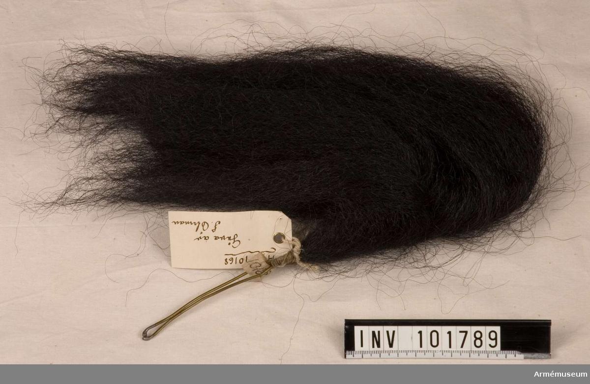Plym m/1865