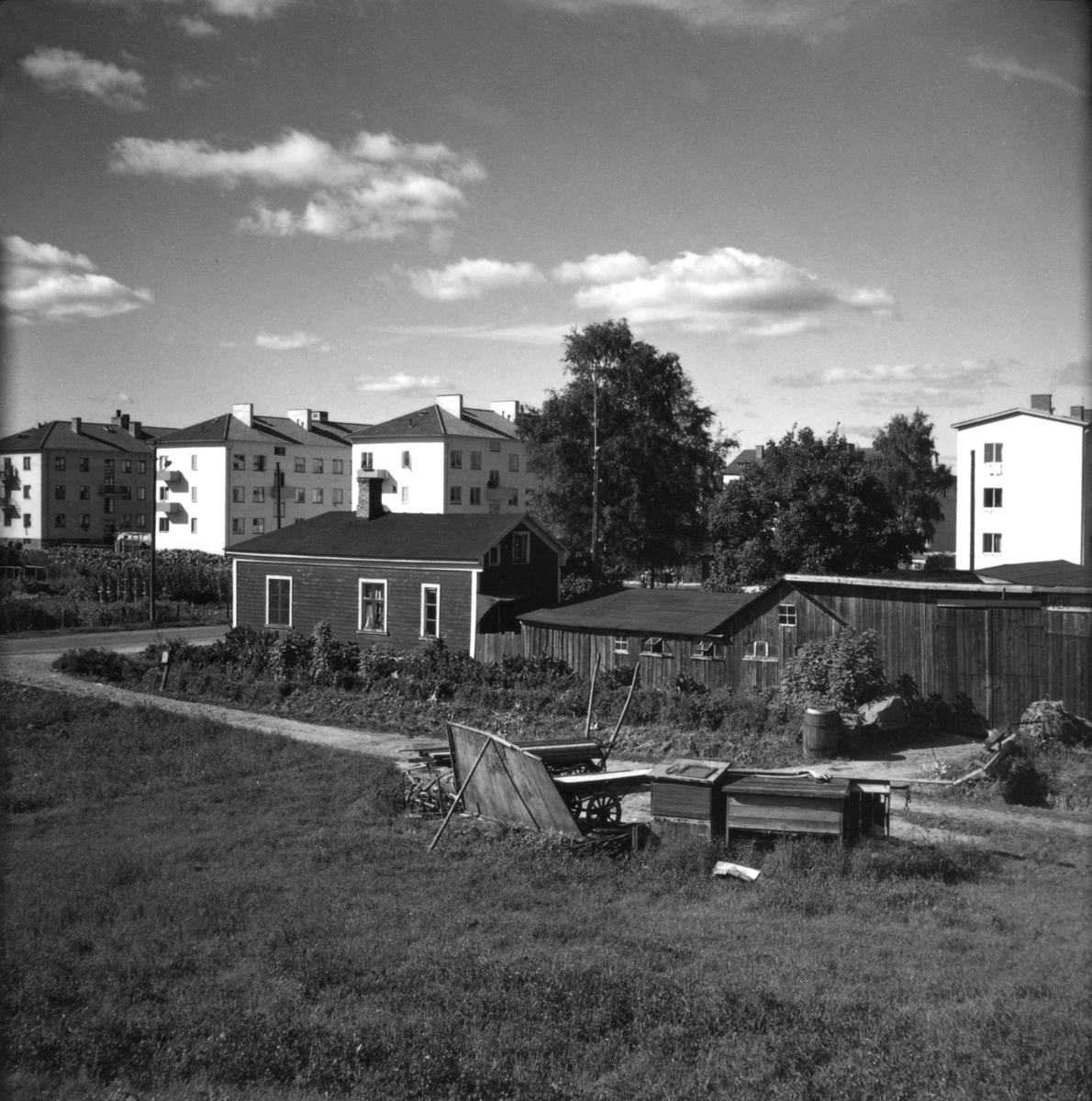 En smal grusväg går utmed en äng där dragkärror och små skjul är uppställda. Större trähus och nyare flerfamiljshus syns i bakgrunden, ett bostadsområde i Jönköping.