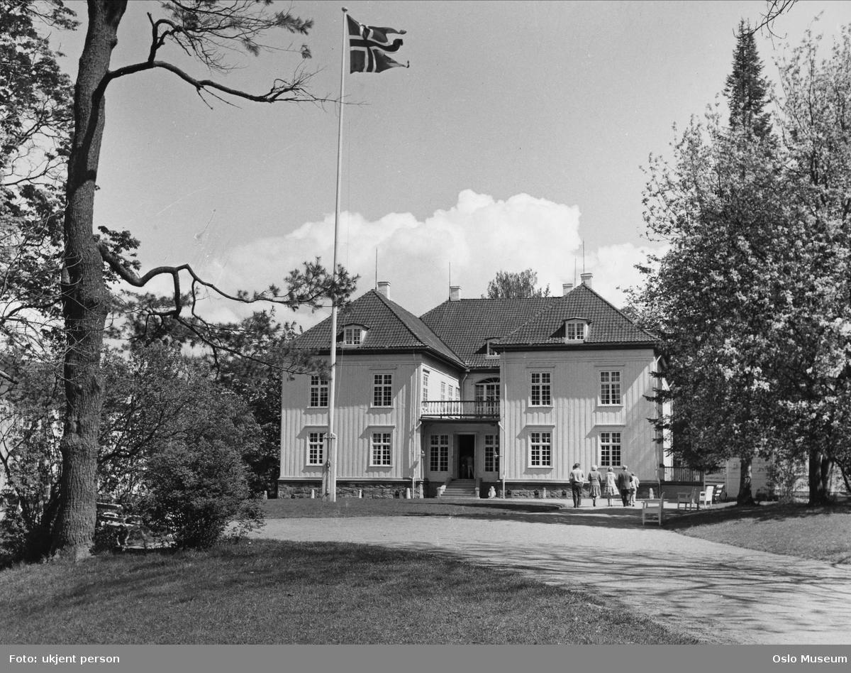 Eidsvollsbygningen, park, flagg, mennesker