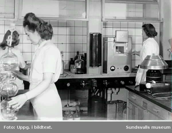 Bilderna inlånade från Maj-Britt Pettersson under dokumentationen sommaren-hösten -00.