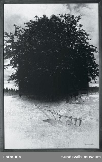 Y-salongen 1982