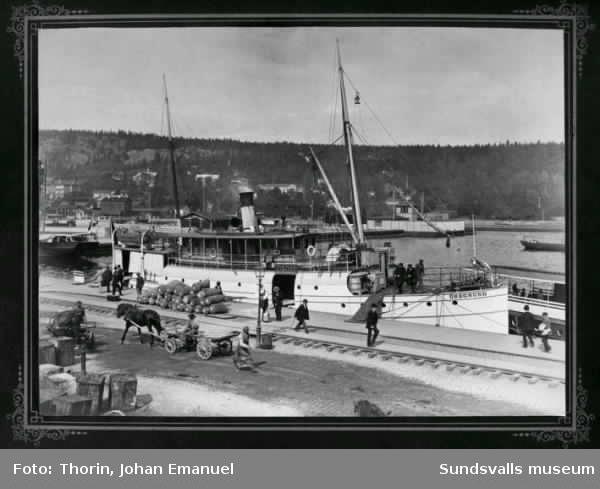 Sundsvalls hamn med passagerarbåten Öregrund vid kajen. Augusti 1892.