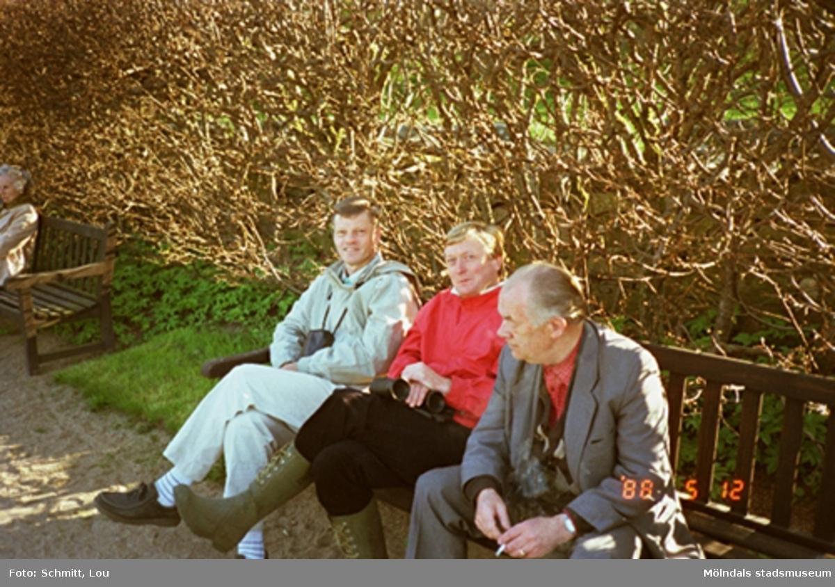 Tre män sitter på en parksoffa i Gunnebo slottspark, 12 maj 1988.
