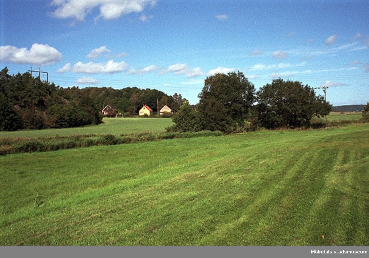 Lindomeån över fälten. Lindomeån inför en gång- och cykelväg på södra sidan om ån. 1998-08-19.