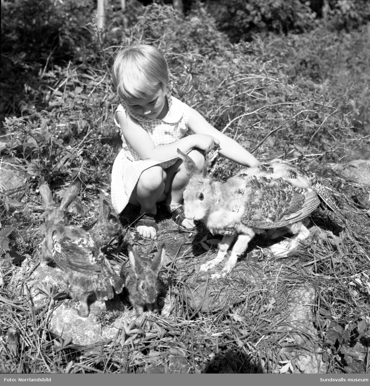 En liten flicka bekantar sig med Skvadern på Norra berget. Fotograferat för Dagens Nyheter.