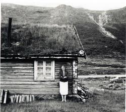 Sildegjerde på Bakkestølane i Hemsedal kring 1950 Margit Ød